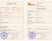 ​Bronevik.com offers now travel and business invitations to Russia
